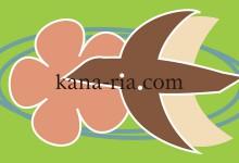 kana-ria.com